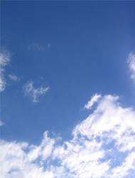 樹創庵 空の写真